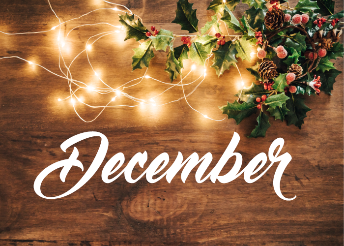 MediLodge of Monroe December Newsletter